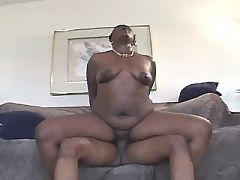 Ebony sensually sucking white penis